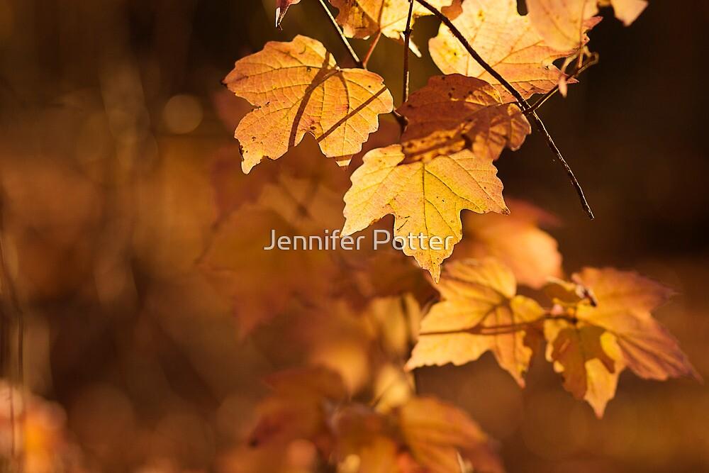 Untitled by Jennifer Potter