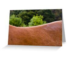 Saddle Landscape I Greeting Card