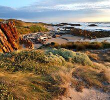 Edge of the World Beach - Arthur River, Tasmania by clickedbynic