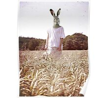 Country Rabbit 2 Poster