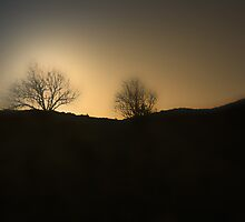 THE LIGHT OVER THE HILL by leonie7
