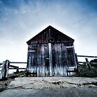 Old Shed by Steve Taylor
