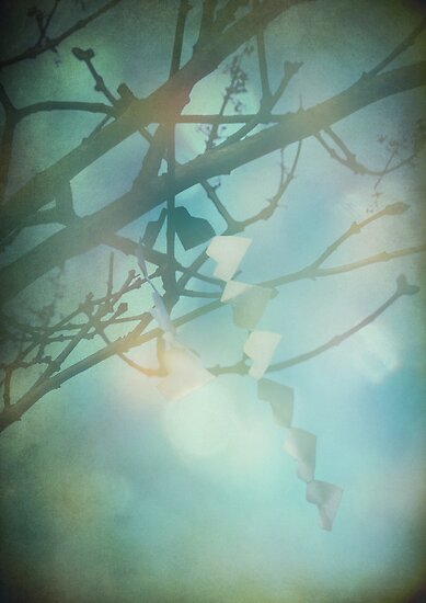 Hearts in the Wind by Sybille Sterk