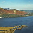 Derwentwater Panorama by David Pringle