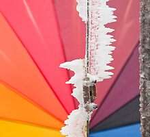 Ice crystals with rainbow umbrella by Michael Brewer