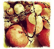 Fruits for good health Photographic Print