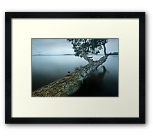 Floating Limb (point of view) Framed Print