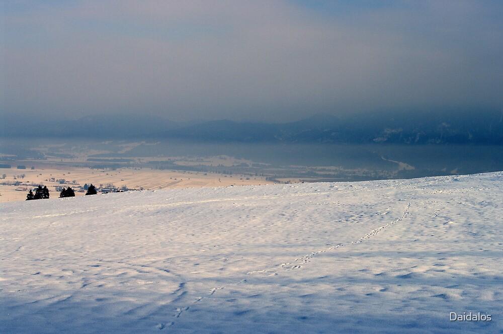 winter scene 6 by Daidalos