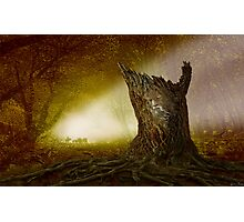 Norse Spirit Photographic Print
