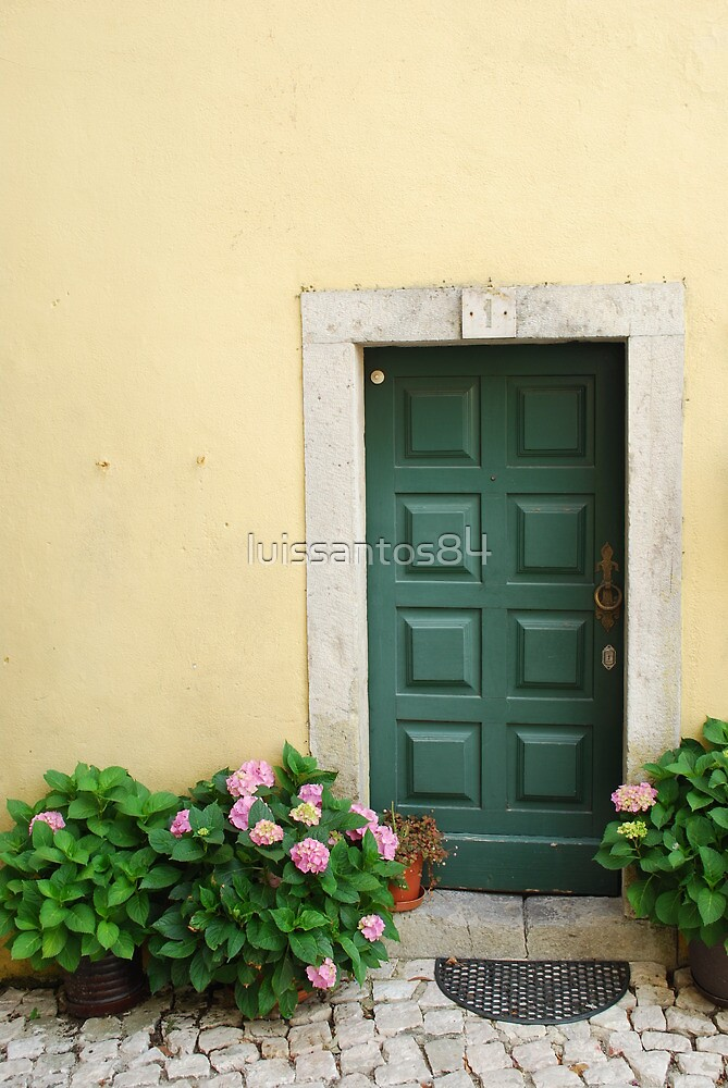 Typical house detail by luissantos84