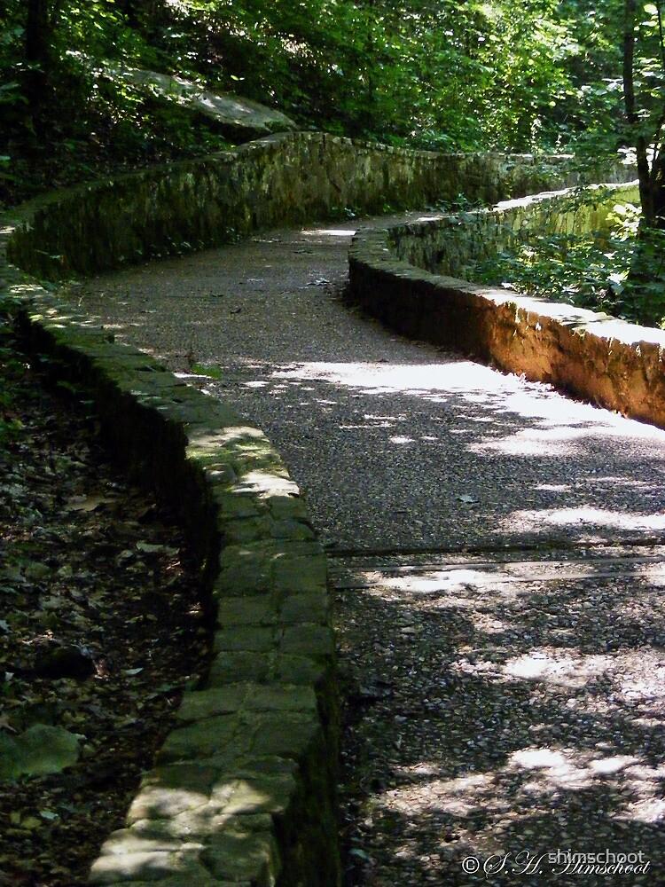 Path to Blanchard Springs Cavern Waterfall by shimschoot