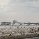 Winter impressions by Maria1606