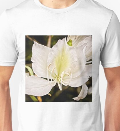 Beautiful butterfly tree Unisex T-Shirt