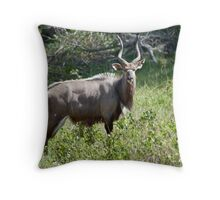 Nyala Throw Pillow