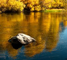 Gold and Blue by Gary Lange