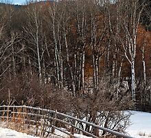 Running Fence II by Bryan D. Spellman