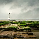 lighthouse.. by Michelle McMahon