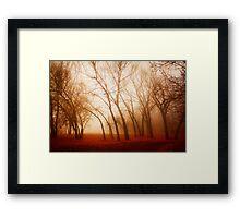 Red Earth Framed Print