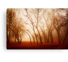 Red Earth Canvas Print