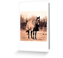 Polly Greeting Card