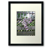 Purple Clematis Flower Vine Basking in Sunlight on a Wooden Garden Arbor Framed Print