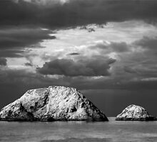 islandswhite by Antonius