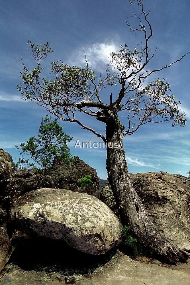hangingrock02 by Antonius