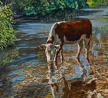Cooling off by Freda Surgenor