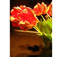 Vibrant Tulips 2 Photographic Print