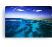 Ribbon Reef No 3 (1) Canvas Print