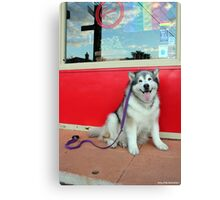 Red Cafe Canvas Print
