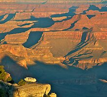 Grand Canyon Shadows by Images Abound | Neil Protheroe