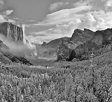 Yosemite Winter Wonderland by Images Abound | Neil Protheroe