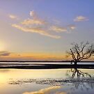 Summer Sunrise - Victoria Pt Qld Australia by Beth  Wode