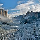 First Snow of the Winter, Yosemite National Park by Neil Protheroe