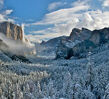 First Snow of the Winter, Yosemite National Park by Images Abound | Neil Protheroe
