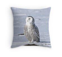 Arctic Guardian Throw Pillow
