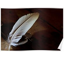 Feather on a chest Poster