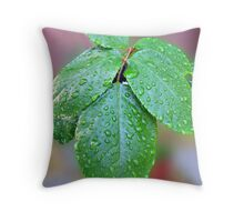 Raindrops on Rose Leaves Throw Pillow