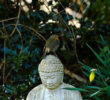 Robin on Buddha by Crispel