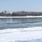 River Sava Under Ice - 2 by branko stanic