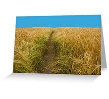 Path Through Cornish Wheat Field in Summer Greeting Card