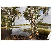 Upper Ross River, Townsville FNQ Poster