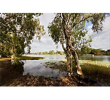 Upper Ross River, Townsville FNQ Photographic Print
