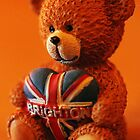 Brighton bear by Roxy J
