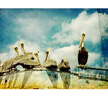 Keep You're Head In The Clouds Photographic Print