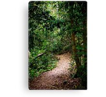 L.Eacham Walk Canvas Print