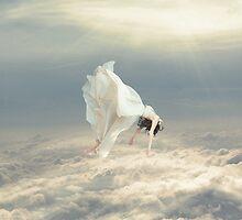 Free Falling Dream by Richard Davis