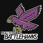 Battlehawks by OrangeRakoon