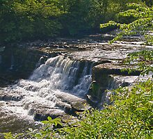 Aysgarth Falls - Yorkshire Dales by Glen Allen